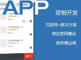 成都APP开发公司