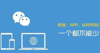 影响开发软件APP的价格有哪些因素?